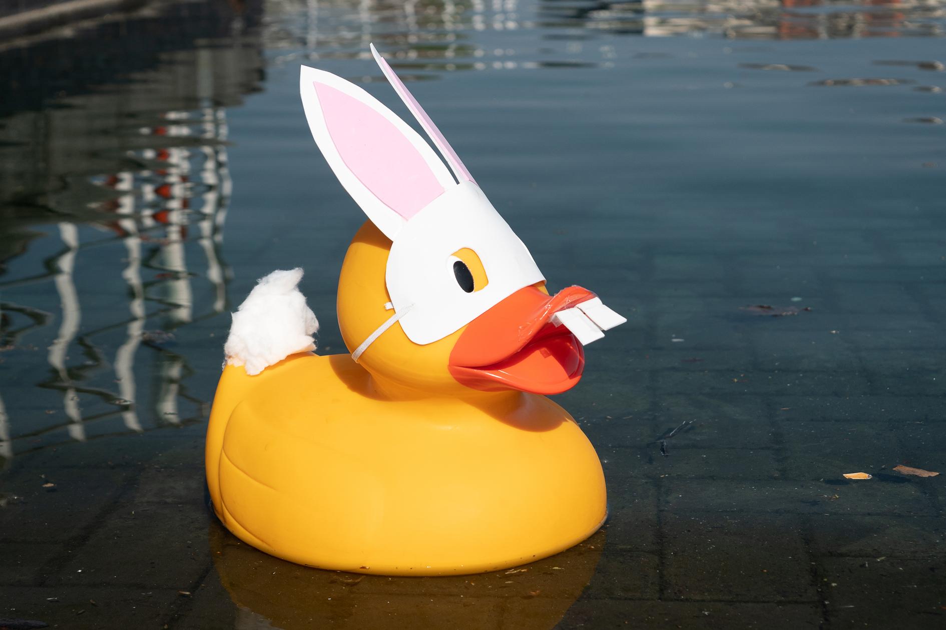 2019 Quays Duck Race